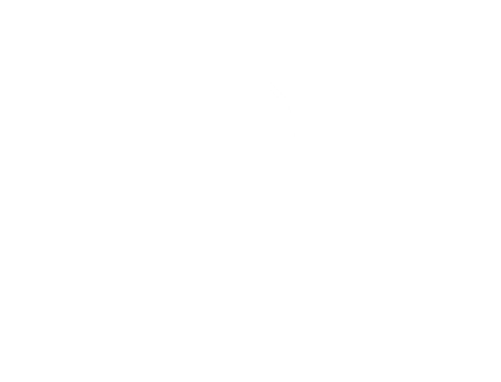 Logo Abeeway white